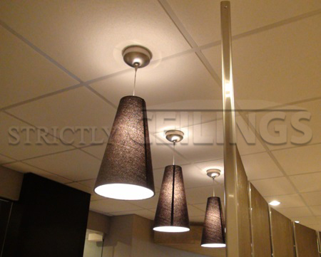 Ceiling Installation Services Wisconsin