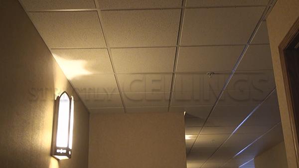 Usg Radar 2x2 2120 Tegular Ceiling Tile