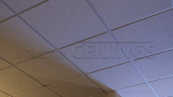 Basic Drop Ceiling Tile Showroom : Low Cost Drop Ceiling Tiles Design Ideas : 2x2 u0026 2x4 ...