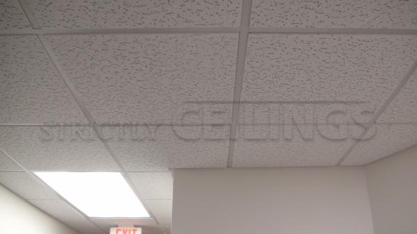 2x2 Usg Fissured 506 Drop Ceiling Tile