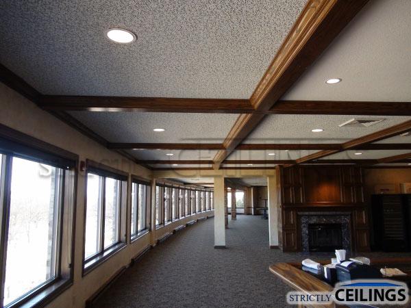 Spline Ceiling System Nakedsnakepress Com